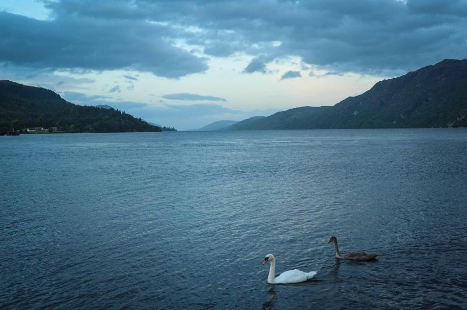 Faseeh-shams-photography-highlands-14.jpg