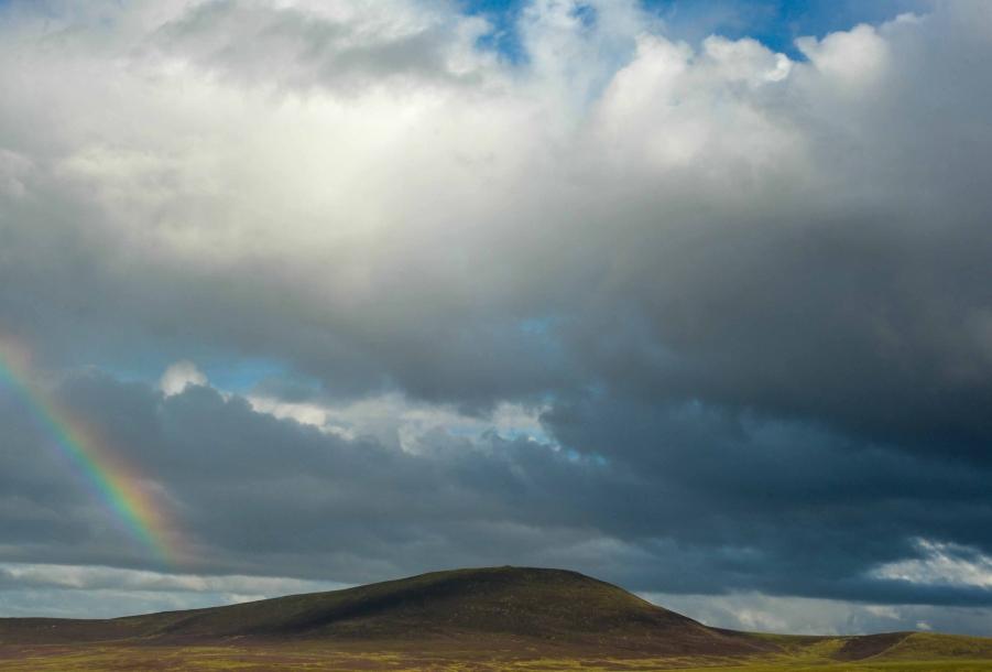Faseeh-shams-photography-highlands-20.jpg